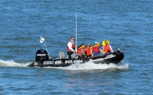 Private cruise - Québec Activity Social Club - Shore Excursion Quebec