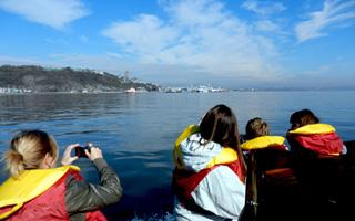 Excursions Maritimes sur le fleuve st-laurent en bateau zodiac